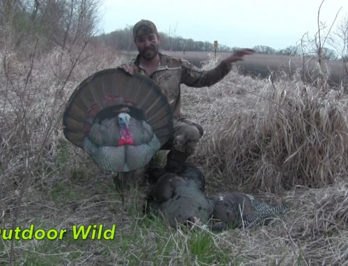 OUTDOOR WILD SEASON 2 EPISODE 9 JESSE HEFTY'S THE SPRING TURKEY HUNT