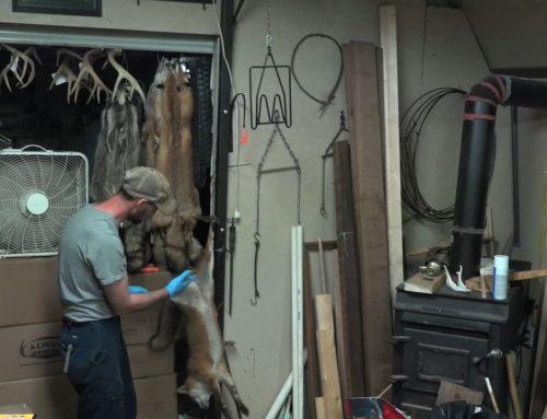 Fur Life Season 3 – Episode 6 Fur Handling